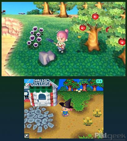 Animal Crossing 3DS vs DS